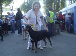 Carmen - BOB in Targu Mures